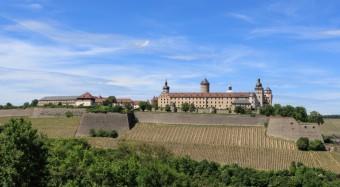 Die Festung Marienberg auf einem Weinberg in Würzburg