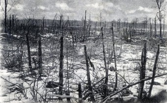 Feldpostkarte-Erster-Weltkrieg2